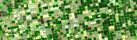 OpenFarm: Free Technology Insights for Farmers