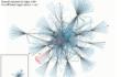 Showcasing my data visualizations